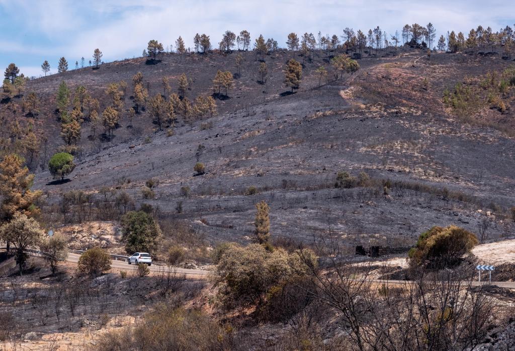 Mont brûlé après l'incendie d'août 2020 à Zalamea la Real (Huelva), dans la région de l'And